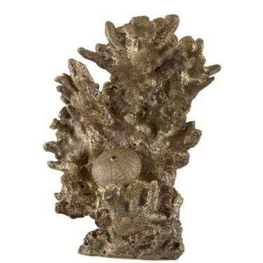 Coral Hoch Pol Gold
