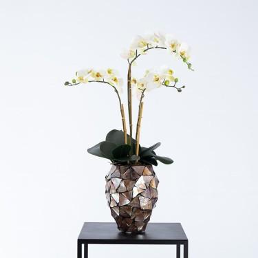 Beau schelpenpot bruin gevuld met orchideeën - Pot & Vaas